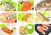 Fish set — Stock Photo