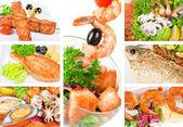 Conjunto de peixes — Foto Stock