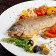Trout fish — Stock Photo