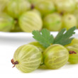 Stock fotografie: Gooseberries