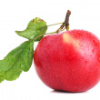 Red apple with leaves on white — Stock Photo #3939587