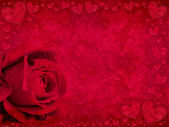 Red rose and hearts — Stock Photo