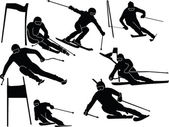 Large slalom skiing collection - vector — Stock Vector