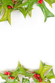 Christmas green framework with holly berry isolated — Stok fotoğraf