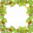 Christmas green framework with holly berry isolated — Stock Photo