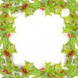 quadro de Natal verde com holly berry isolado — Foto Stock