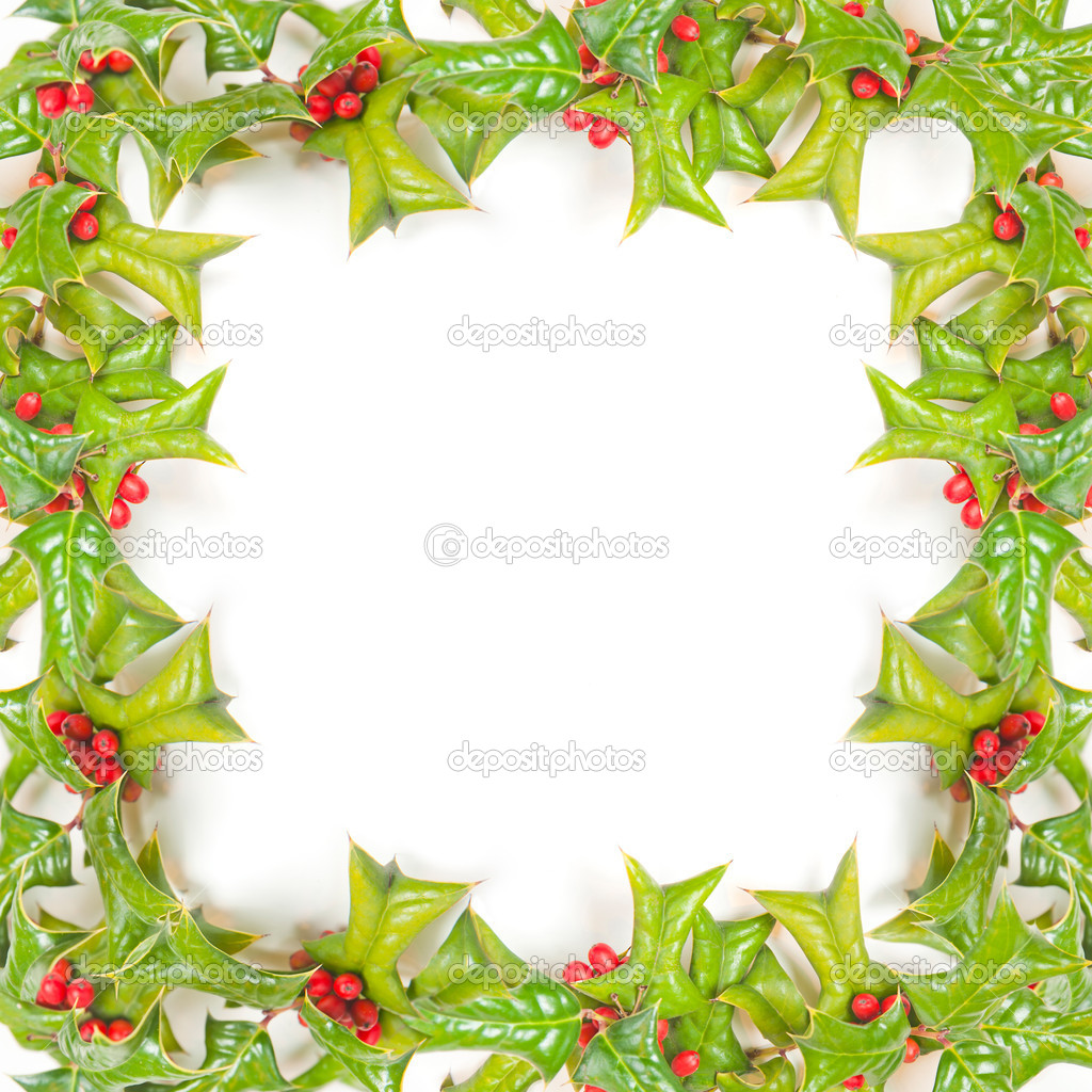 Christmas green framework with holly berry isolated on white background   — Stock Photo #4215990