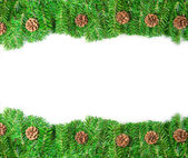 Pine branch christmas frame with copy space — Стоковое фото
