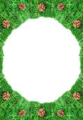 Pine branch christmas frame with copy space — 图库照片
