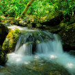 Waterfall is beautiful - Stock fotografie