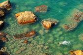 Beautiful coastline — Foto de Stock