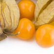 Physalis fruits — Stock Photo