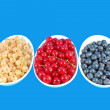 colorful berries — Stock Photo
