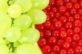 Uvas e passas de corinto — Fotografia Stock