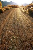 Droga w dziedzinie — Zdjęcie stockowe