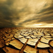 Drought land — Stock Photo #4261826