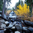 Autumn creek - Stock Photo