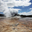 Geyser - Stock Photo