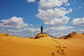 Partez en randonnée dans le désert — Photo