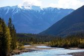 Kanadensiska bergen — Stockfoto