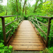 Stock Photo: Boardwalk in green forest