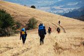 In hike — Stockfoto