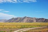 Prairie — Stock Photo