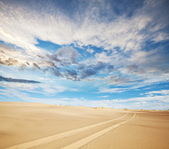 Desert Gobi — Stock Photo