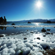 Stock Photo: Mono lake