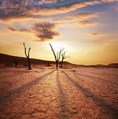 Dode vallei in namibië — Stockfoto