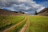 Vägen i bergen — Stockfoto