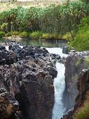 Tropiskt vattenfall — Stockfoto