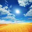 Stock Photo: Desert Gobi