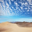Gobi Desert — Stock Photo #5050539