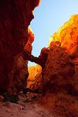 Bryce Canyon — Zdjęcie stockowe