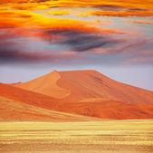 砂漠の砂丘 — ストック写真