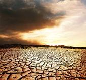 Tierra de sequía — Foto de Stock