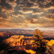 Bryce Canyon — Stock Photo #5212460