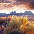 Monument valley — Stock Photo #5331576