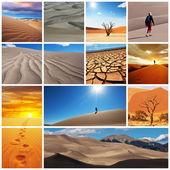 Caminata en el desierto — Foto de Stock