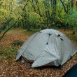 Wet tent in wood in the rain - Stock Photo