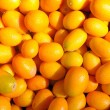 Ripe kumquat - Stock Photo