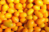 Ripe kumquat — Stock Photo