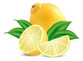 Fresh lemons — Stock Vector