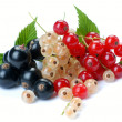 Red wihite black currant - Stock Photo