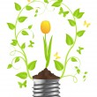 Bulb with plant of tulip — Stock Vector
