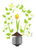 žárovka s rostlinou tulipán — Stock vektor