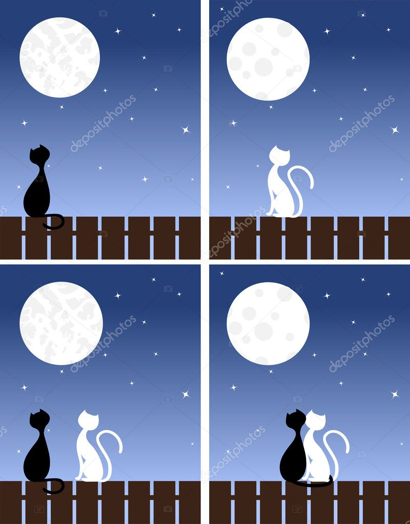 Two enamoured cats sit on a fence. Vector illustration.  Stock Vector #4749475