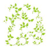 Zielonymi gałązkami — Wektor stockowy