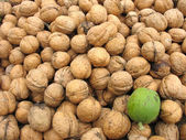 Brown whole organic walnuts as background — Stock Photo